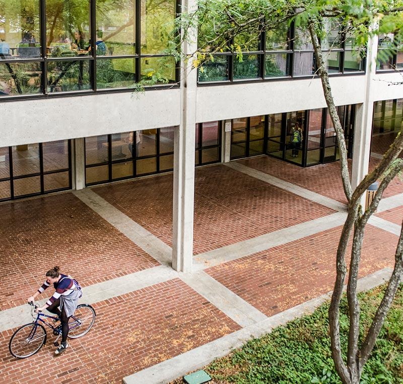 bike and brick