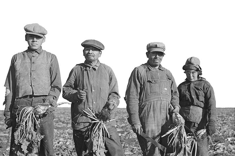 Immigrant beet farmers.