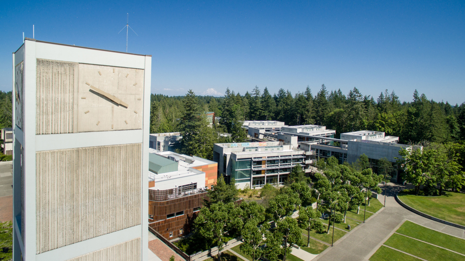 Thurston County Higher Ed Presidents Issue Joint Statement on Diversity, Equity, and Inclusion Action Steps