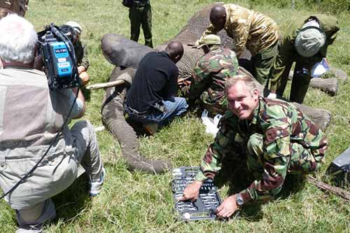 Evergreen Alum Protects Elephants in Kenya
