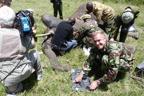 Evergreen Alum Protects Elephants in Kenya