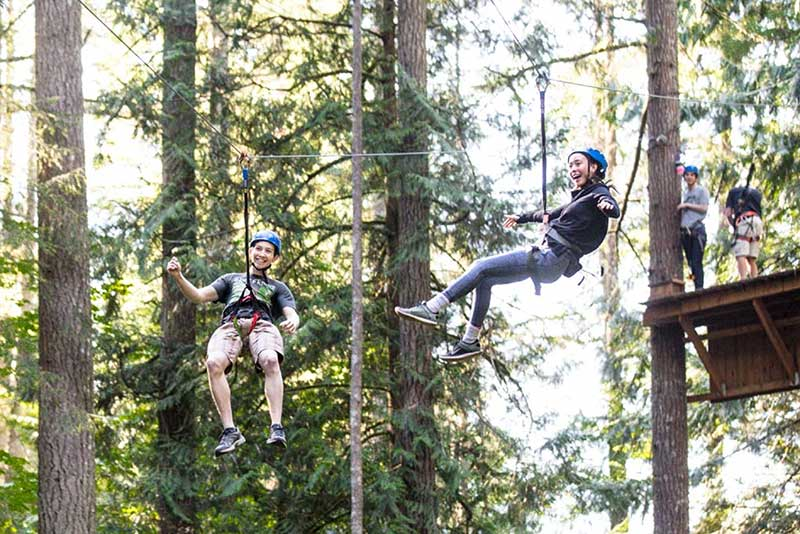 Kids hanging from a zipline in the trees