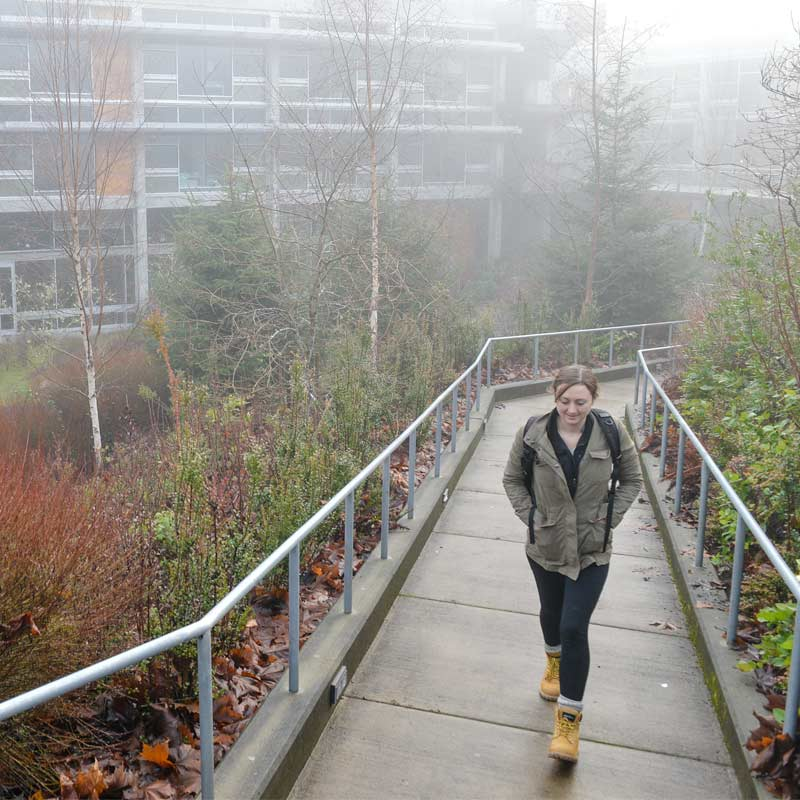 web payment the evergreen state college