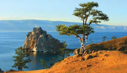 shaman tree on lake baikal