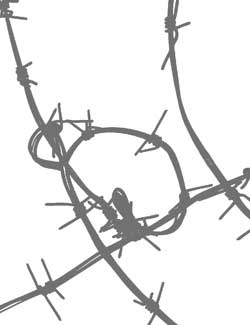 barbed wire graphic