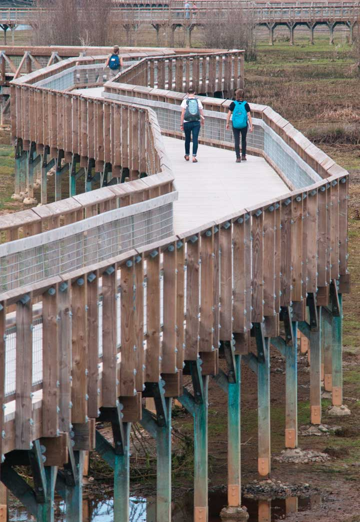 Image of the estuary restoration project at the Nisqually National Wildlife Refuge