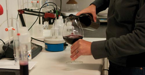 Wine tasting in a lab
