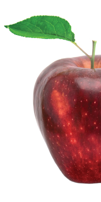 close up of shiny red apple