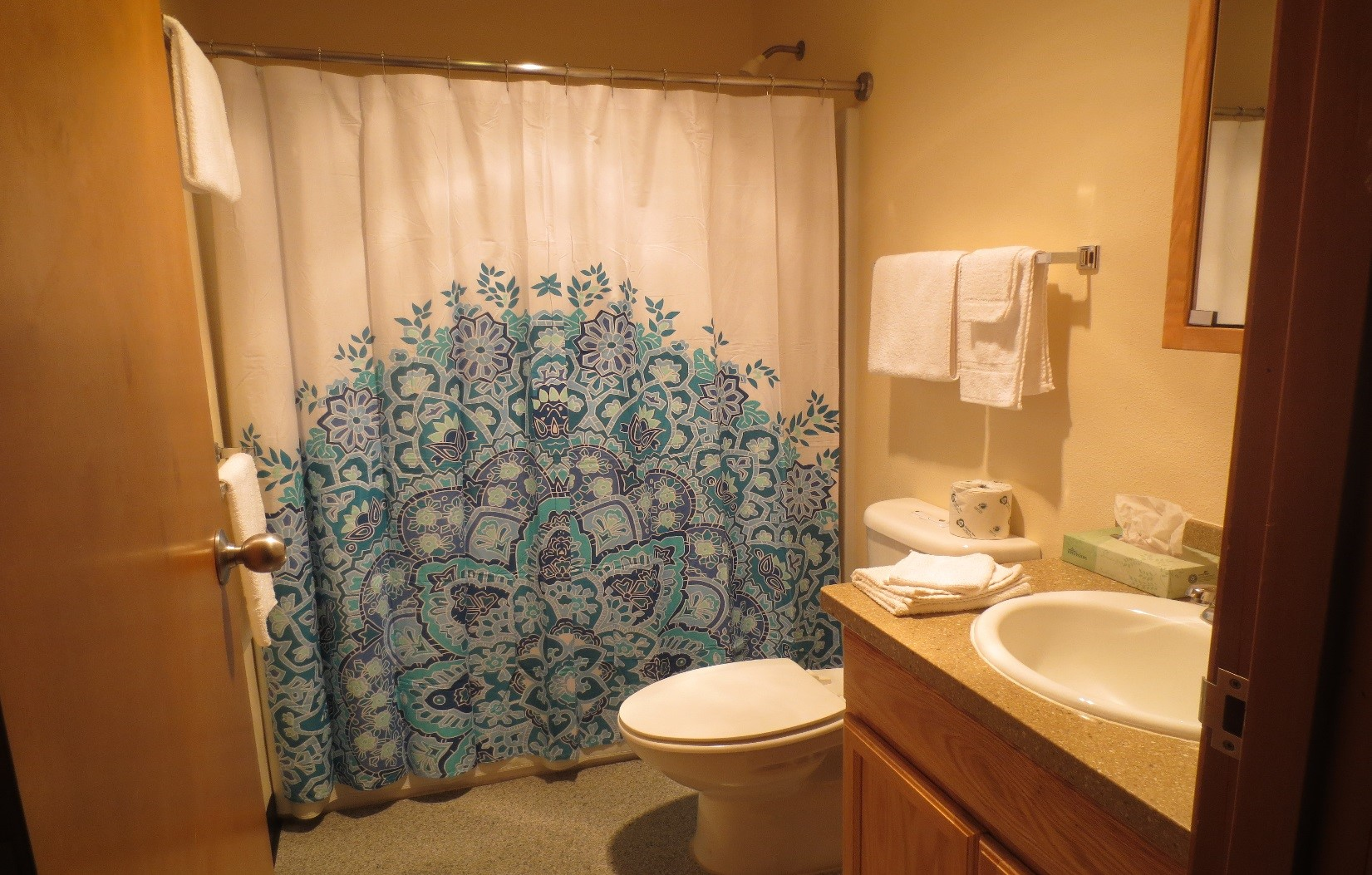 housing guestroom bathroom