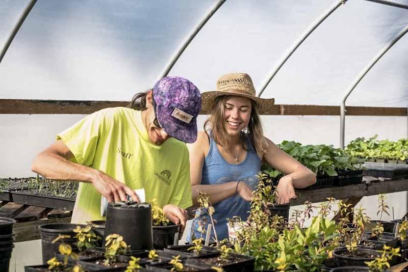 Agriculture Path of Study - Organic Farm