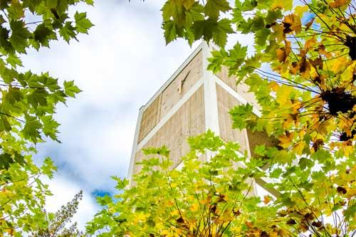 A view of the campus clocktower from below, up through the trees