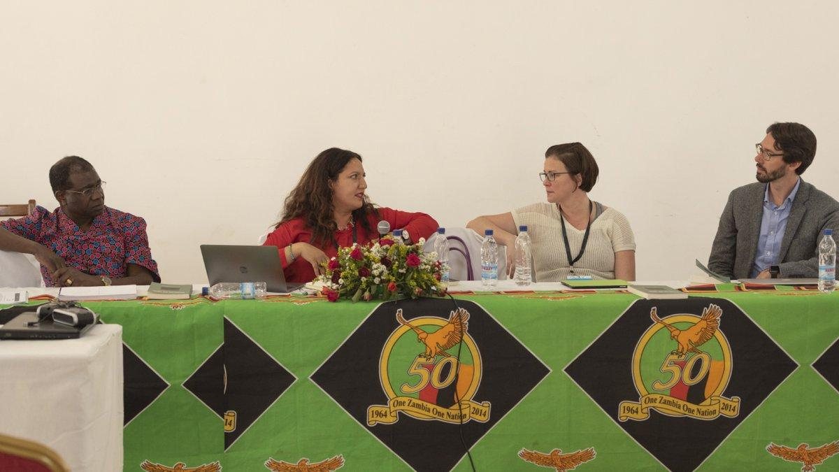 Sarah Eltantawi on panel at One Zambia One Nation event
