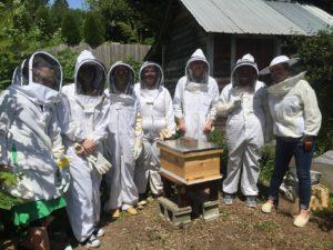 Annie Pocklington Bees