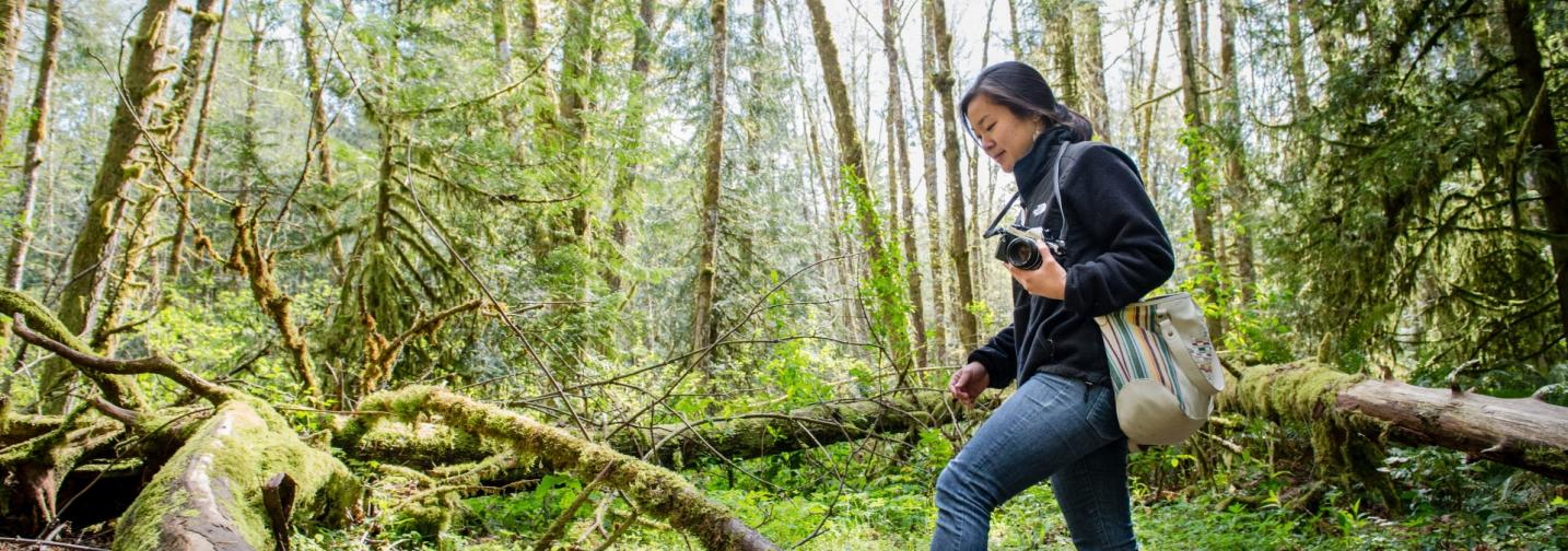 Student with camera walks through a mossy forest