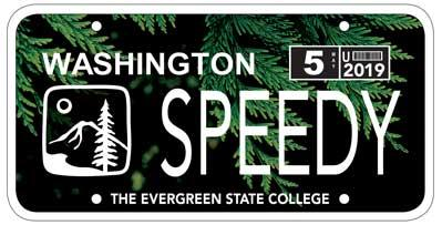 Evergreen License Plate