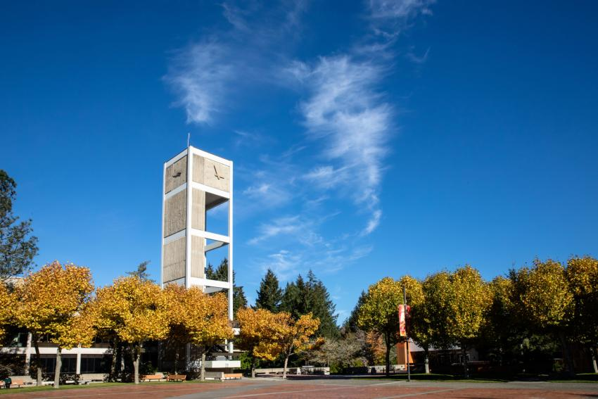 Evergreen's Clock tower surrounded by blue sky on a sunny day